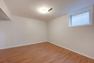 Photo 24: 12123 61 Street NW in Edmonton: House for sale : MLS®# E4166111
