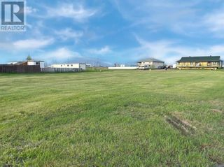 Photo 4: 4408 46 Avenue in Rycroft: Vacant Land for sale : MLS®# A1114348