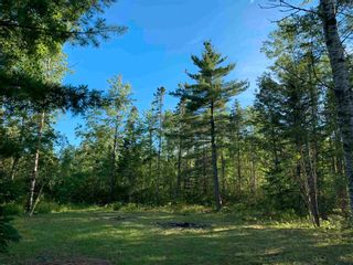Photo 2: Lot 31 Highway 14 in Nine Mile River: 105-East Hants/Colchester West Vacant Land for sale (Halifax-Dartmouth)  : MLS®# 202118383