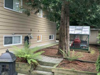 "Photo 29: 5065 1ST Avenue in Delta: Pebble Hill House for sale in ""ENGLISH BLUFF - TSAWWASSEN BEACH"" (Tsawwassen)  : MLS®# R2560136"