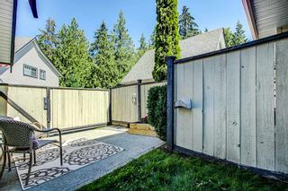 "Photo 17: 16 11536 236 Street in Maple Ridge: Cottonwood MR Townhouse for sale in ""Kanaka Mews"" : MLS®# R2305474"