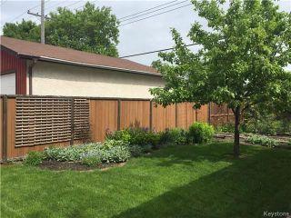 Photo 17: 297 Knowles Avenue in Winnipeg: North Kildonan Residential for sale (3G)  : MLS®# 1809527
