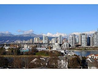 Photo 17: 2268 ALDER Street in Vancouver West: Home for sale : MLS®# V1045830