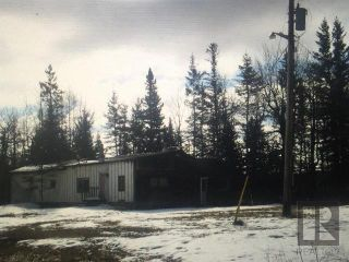 Photo 9: 17084 Camp Morton Road in Gimli Rm: Camp Morton Residential for sale (R26)  : MLS®# 1827446