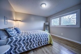 Photo 23: 919 MIDRIDGE Drive SE in Calgary: Midnapore Detached for sale : MLS®# A1016127