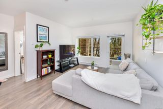Photo 9: 102 290 Wilfert Rd in : VR View Royal Condo for sale (View Royal)  : MLS®# 870587