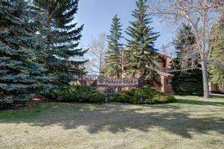 Photo 25: 305 2520 Palliser Drive SW in Calgary: Oakridge Row/Townhouse for sale : MLS®# A1101394