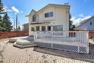 Photo 45: 117 Hawkford Court NW in Calgary: Hawkwood Detached for sale : MLS®# A1103676
