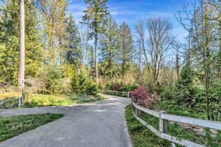 Photo 29: 20459 86 Avenue in Langley: Willoughby Heights Condo for sale : MLS®# R2568320