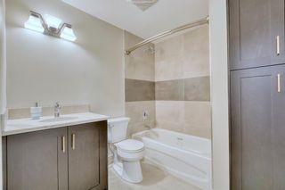 Photo 29: 719 ALLDEN Place SE in Calgary: Acadia Detached for sale : MLS®# A1031397