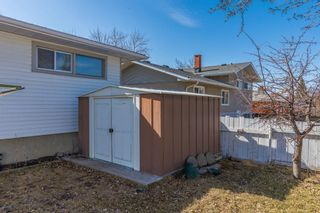 Photo 27: 127 Ferncliff Crescent SE in Calgary: Fairview Detached for sale : MLS®# A1088443