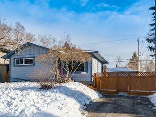 Main Photo: 95 Ferncliff Crescent SE in Calgary: Fairview Detached for sale : MLS®# A1064499