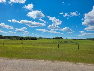 Photo 4: 51213 Rge Road 260: Rural Parkland County Rural Land/Vacant Lot for sale : MLS®# E4251252