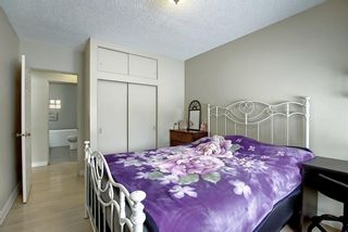 Photo 25: 63 Cromwell Avenue NW in Calgary: Collingwood Detached for sale : MLS®# A1060725