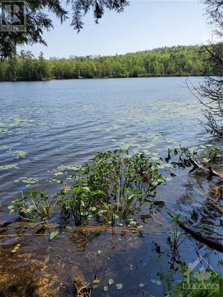 Photo 12: 2600 CLYDE LAKE ROAD in Lanark: Vacant Land for sale : MLS®# 1253879