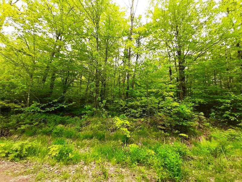 Main Photo: Lot N5 Nature Haven Road in Lake Paul: 404-Kings County Vacant Land for sale (Annapolis Valley)  : MLS®# 202009527