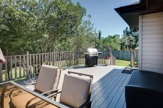 Photo 31: 21 CITADEL CREST Place NW in Calgary: Citadel Detached for sale : MLS®# C4197378
