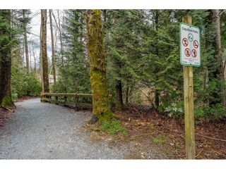 "Photo 34: 14 2978 WALTON Avenue in Coquitlam: Canyon Springs Townhouse for sale in ""Creek Terraces"" : MLS®# R2548187"