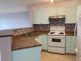 Photo 5: 1310 2280 68 Street NE in Calgary: Monterey Park Apartment for sale : MLS®# A1113863