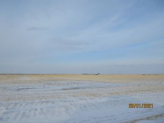 Photo 9: 1,596.24 Acres- Parry, SK Area - RM Caledonia # 99 - Farmland For Sale