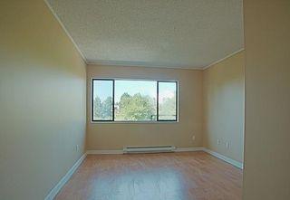 """Photo 8: 304 7297 MOFFATT Road in Richmond: Brighouse South Condo for sale in """"DORCHESTER CIRCLE"""" : MLS®# R2195127"""