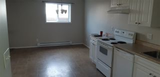 Photo 8: 11924 93 Street in Edmonton: Zone 05 House for sale : MLS®# E4236916