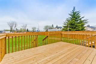 Photo 38: 45 Martinview Crescent NE in Calgary: Martindale Detached for sale : MLS®# A1112618
