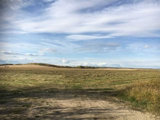 Photo 6: HWY 39 RR 34: Rural Leduc County Rural Land/Vacant Lot for sale : MLS®# E4235214
