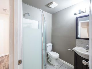 Photo 22: 124 Martinbrook Road NE in Calgary: Martindale Detached for sale : MLS®# A1100901
