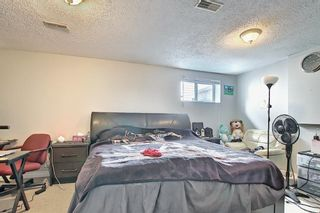Photo 29: 142 Martindale Boulevard NE in Calgary: Martindale Detached for sale : MLS®# A1111282