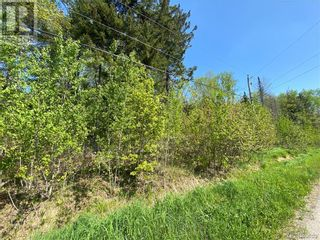 Photo 29: 5264 Rte 770 in Rollingdam: Vacant Land for sale : MLS®# NB058269
