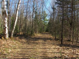 Photo 5: 211 MADILL Road in Katrine: Vacant Land for sale : MLS®# 40131216