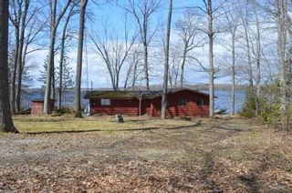 Photo 14: 195 Campbell Beach Road in Kawartha Lakes: Rural Carden House (Bungalow) for sale : MLS®# X4741548
