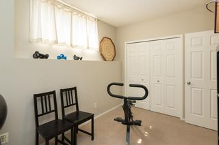 Photo 22: 172 COPPERFIELD Rise SE in Calgary: Copperfield Detached for sale : MLS®# C4201134