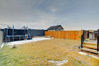 Photo 30: 356 SKYVIEW SHORES Manor NE in Calgary: Skyview Ranch Detached for sale : MLS®# C4277892