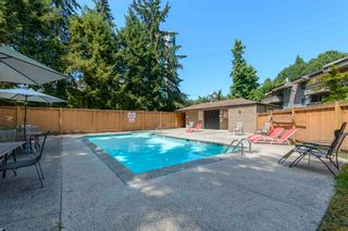 """Photo 27: 111 1195 PIPELINE Road in Coquitlam: New Horizons Condo for sale in """"DEERWOOD COURT"""" : MLS®# R2601284"""