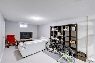 Photo 25: 4520 Namaka Crescent NW in Calgary: North Haven Detached for sale : MLS®# A1112098