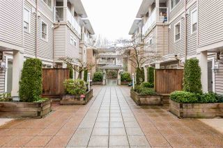 "Photo 19: 110 2432 WELCHER Avenue in Port Coquitlam: Central Pt Coquitlam Townhouse for sale in ""GARDENIA"" : MLS®# R2253875"