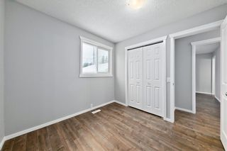 Photo 15: 100 DOVERVIEW Place SE in Calgary: Dover Detached for sale : MLS®# A1024220