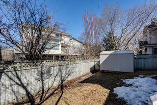 Photo 43: 238 Mt Douglas Court SE in Calgary: McKenzie Lake Detached for sale : MLS®# A1093019