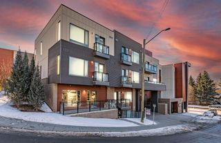 Main Photo: 85 85 34 Avenue SW in Calgary: Parkhill Apartment for sale : MLS®# A1076316