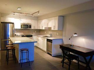 "Photo 3: 319 12075 EDGE Street in Maple Ridge: East Central Condo for sale in ""EDGE"" : MLS®# R2113655"