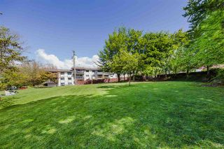 """Photo 25: 307 2320 TRINITY Street in Vancouver: Hastings Condo for sale in """"Trinity Manor"""" (Vancouver East)  : MLS®# R2576789"""