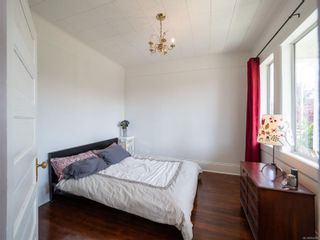 Photo 8: 238 Beechwood Ave in : Vi Fairfield East House for sale (Victoria)  : MLS®# 854081