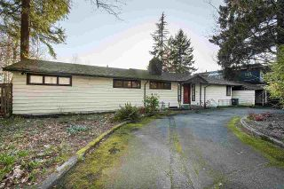 Photo 6: 2505 EDGEMONT BOULEVARD in North Vancouver: Edgemont House for sale : MLS®# R2557392