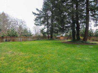 Photo 58: 1006 Anderton Rd in COMOX: CV Comox (Town of) House for sale (Comox Valley)  : MLS®# 726020