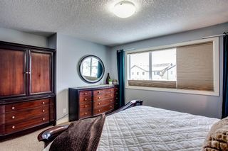 Photo 18: 691 COPPERPOND Circle SE in Calgary: Copperfield Detached for sale : MLS®# A1063241