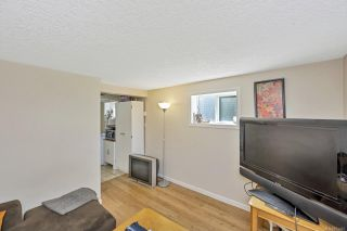 Photo 19: 1451 Lang St in : Vi Mayfair House for sale (Victoria)  : MLS®# 871462