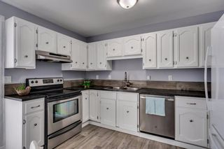 Photo 10: 644 RADCLIFFE Road SE in Calgary: Albert Park/Radisson Heights Detached for sale : MLS®# A1025632