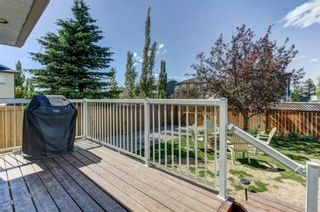 Photo 28: 55 Thornbird Way SE: Airdrie Detached for sale : MLS®# A1114077